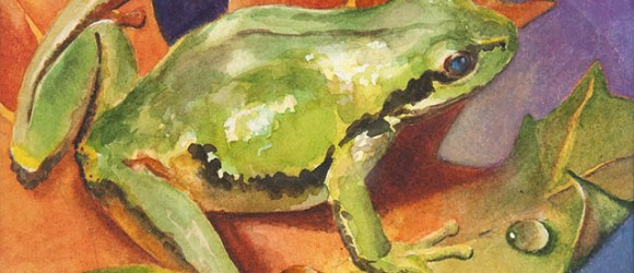 image of a painted frog by Mary Burgess