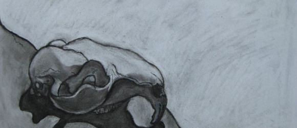 Image of charcoal drawing by artist Jennifer Feagler